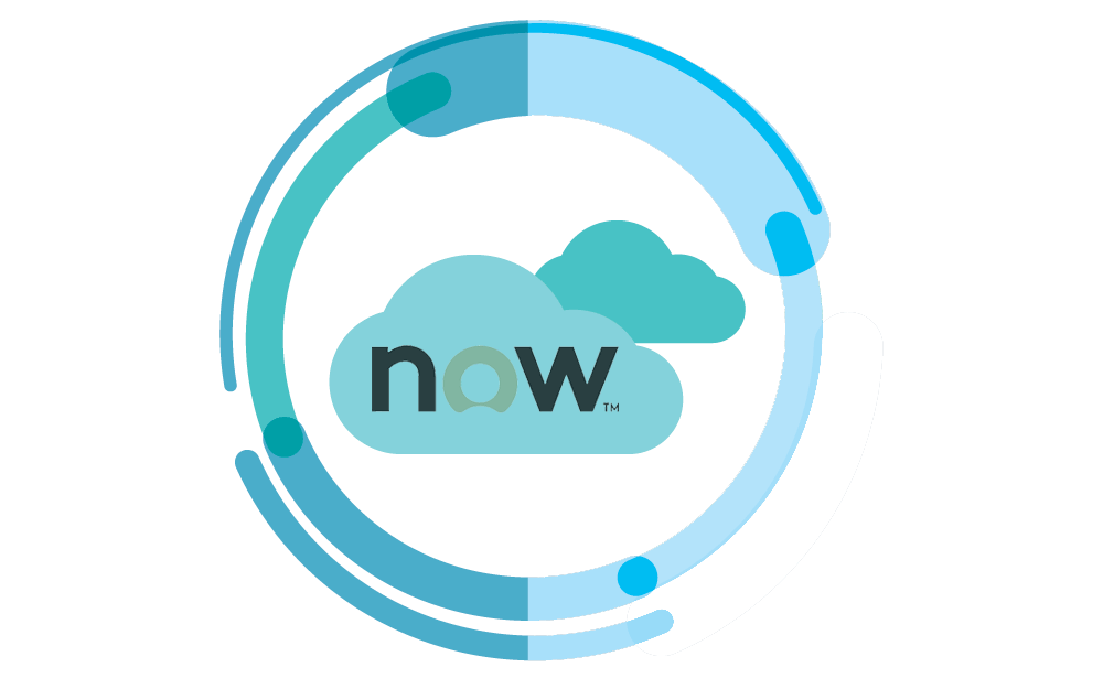 About ServiceNow Solutions